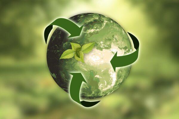 Basura en esta época del año: recicla, reutiliza.